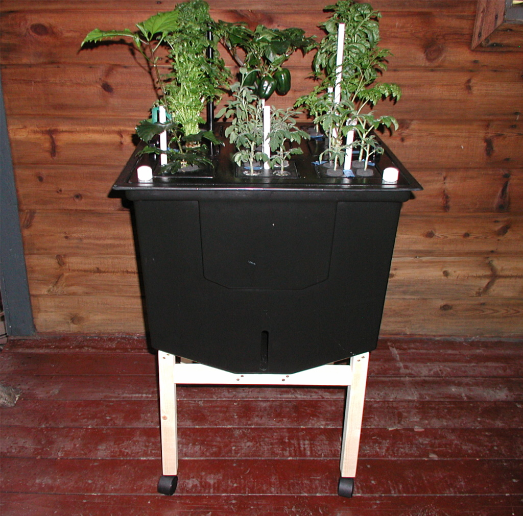 Our Herb Garden - Indoor growing year round!  System fits anywhere